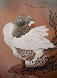 C.F Tunnicliffe goose