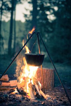My spring camping dreams have started up again. I'll have to wait this year. It's a Wild World