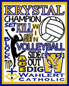 Volleyball Print  custom volleyball poster  by PinksPerfections