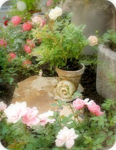 Roses<3
