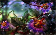 Herbal Magic of Passion Flower - Passiflora - Magical Recipes Online Exotic Flowers, Pretty Flowers, Colorful Flowers, Abstract Flowers, Glowing Flowers, Nice Flower, Flower Wallpaper, Wallpaper Backgrounds, Nature Wallpaper