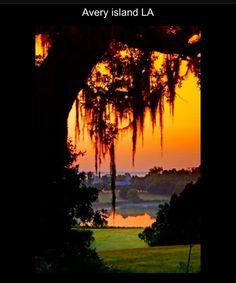 Avery Island, Louisiana.