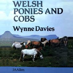 Welsh Ponies and Cobs by Wynne Davies