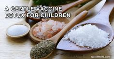 GENTLE VACCINE DETOX FOR CHILDREN AND ADULTS: REMOVE HEAVY METALS AND OTHER TOXINS