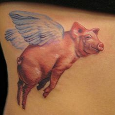 ~Flying Pig~   Looks like a wonderfully painted pillow...