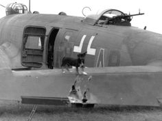 Damaged Luftwaffe Fw-200 Condor