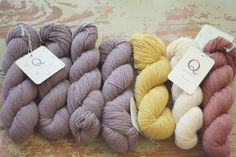 dusk, carrie's yellow, egret, iron by Quince & Co