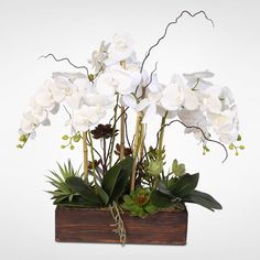 Real Touch Phalaenopsis Silk Orchids with Succulents in a Dark Wooden Rectangular Container