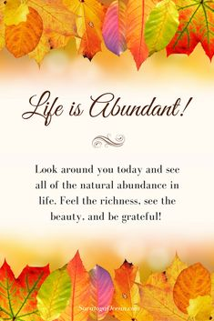 Abundance comes in many forms. Life itself is amazingly abundant, if you take the time to look around. Think about this as you go through your day, and notice all that you can be grateful for. <3