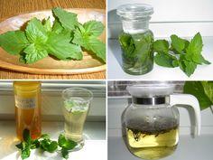 Korn, Herbs, Flowers, Gardening, Syrup, Garten, Herb, Lawn And Garden, Royal Icing Flowers