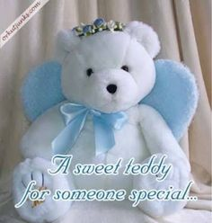 Teddy Day best Images and Wallpapers