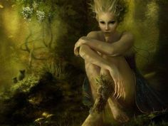 """FLIDAIS a female mythological figure in early Irish literature, including the Lebor Gabála Érenn, the Metrical Dindsenchas and the Ulster Cycle. She is a shape-shifter and member of the Tuatha Dé Danann, known by the epithet Foltchaín (""""beautiful hair""""). She was considered the goddess of the forest, woodlands, and wild things."""