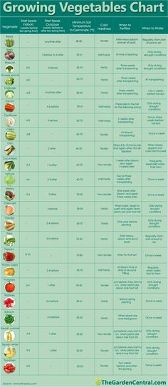 Love this When to plant vegetables guide!