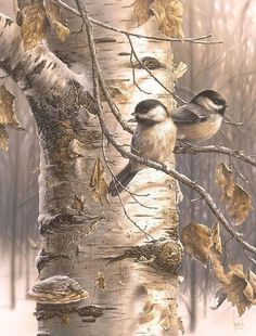 Beautiful sparrows on a tree