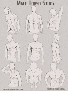 Anatomy Drawing Male Torso/Chest Study by TIFFASHY - Anonymous said: Hello, if you have the time, could you explain how hair lines work? specifically on men because I am struggling :-( Answer: Well, I can give you some tips based on how I do it. Drawing Body Poses, Body Reference Drawing, Human Figure Drawing, Drawing Reference Poses, Anatomy Reference, Male Pose Reference, Drawing Proportions, Hand Reference, Drawing Muscles