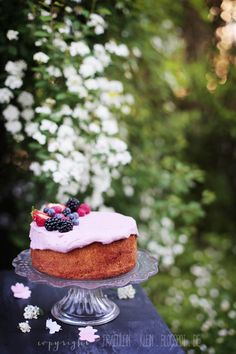 glutenfreier Mandelvanillekuchen mit Beeren • Erdbeer - Limetten Cupcakes • Origami Kirschblüten