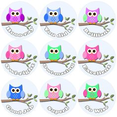 <p>These Owl Branch Praise Words reward stickers are perfect to make a big impression on young learners and can be used with any Reward System.</p>