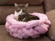 Make your own cat bed! Spoil your furry friend with the softest Merino wool bed…