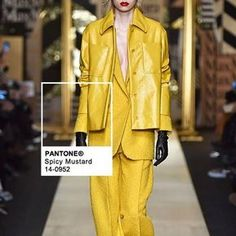 We spotted @pantone #SpicyMustard hue on the runway at @maxmara during #MFW this #fw16 season | ) by @fashionsnoops #FScolor #PantoneTrends #maxmara#womenswear