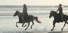 Equisol Equestrian Retreats | Costa Rica