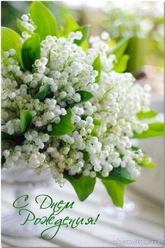 ❧ Lily of the valley - Muguet ❧ Fresh Flowers, Spring Flowers, White Flowers, Beautiful Flowers, Beautiful Flower Arrangements, Floral Arrangements, Garden Shrubs, Lily Of The Valley, Trees To Plant