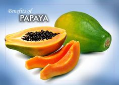 Amazing Benefits of Papaya About Papaya  The papaya is a large, tree-like plant, with a single stem growing from 5 to 10 m (16 to 33 ft) tall, with spirally arranged leaves confined to the top of the trunk Papayas are spherical or pear-shaped fruits that can be as long as 20 inches. Papaya plant is grown extensively all over the tropical regions. The fruit, as well as the other parts of the papaya tree, contain papain, an enzyme that helps digest proteins. See more..naturebring.com