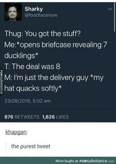 Thug: You got the stuff? Me: *opens briefcase revealing 7 ducklings* T: The deal was 8 M: I'm just the delivery guy *my hat quacks softly*