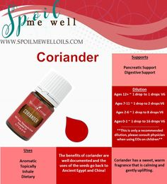 Coriander Essential Oil, Young Living Essential Oils, all natural digestive support, all natural healthy bodies, dilution ratios, essential oil DIY, essential oil recipe, essential oils for stomach