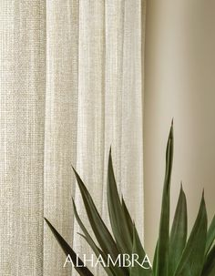 [New] The 10 Best Home Decor (with Pictures) - PALMA x natural sheers with soft to touch finishes of sheer innovative x Exclusively distributed in the UK by Floral Print Design, Fabric Design, Decor Interior Design, Interior Decorating, Curtain Fabric, Curtains, Season Colors, Green And Gold, Brown And Grey