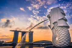 5 Fun things to do at night outside in Singapore