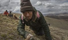 Inside The Dying Days Of Tibet's Caterpillar Fungus 'Gold Rush' Reading Stories, Traditional Chinese Medicine, Gold Rush, Caterpillar, Tibet, Fungi, Stuffed Mushrooms, Day, Dating Relationship