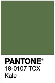 c234d5359 126 Best Pantone Codes images in 2019 | Colors, Pallets, R color palette