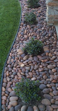 Another landscape look for places where we don't want grass. I usually don't like rock as much as bark, but I do like the rive rock look here. rock gardens with grasses, landscaping with stones, backyard rock, front yards, patio, hous, river rocks landscaping, place, landscaping with rocks