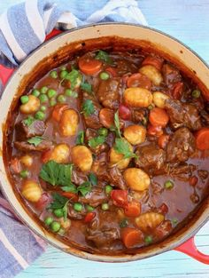 Red Pot of Homemade Beef Stew with Gnocchi Potato Dumplings