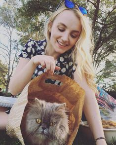 Image about cat in Evanna 💙 by Caroline 🌺 on We Heart It
