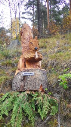 Chainsaw carving, squirrel, wood carving