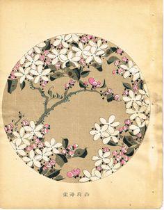 """Japanese antique woodblock print Ito Jakuchu """"Malus micromalus from Jakuchu gafu"""""""