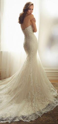 carly :  Sophia Tolli 2015 Bridal Collection | Pinkous
