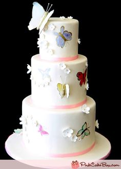 Painted Butterfly Wedding Cake by Pink Cake Box