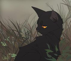 Hi I'm Darkpaw (later becomes Darksun) Shadowdash and Shadowmaker's son and my mentor is Flamegaze