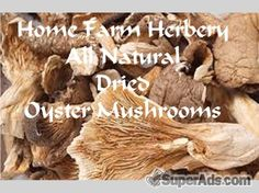 Oyster Mushrooms Dried, Order now, FREE shipping in Colorado CO - Free Colorado SuperAds