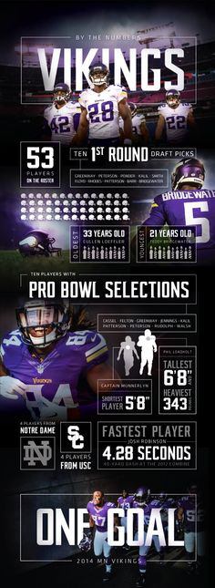 Minnesota Vikings Infographic 2 on Behance