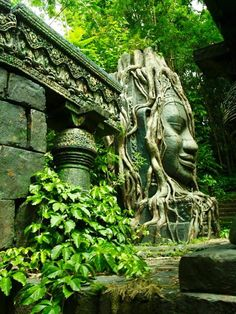 Ancient Ruins along The Jungle Cruise Places To Travel, Places To See, Beautiful World, Beautiful Places, Beautiful Scenery, Fantasy Places, Ancient Ruins, Ancient Architecture, Architecture Art
