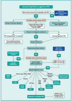 Diagnostic algorithm of Pulmonary Hypertension