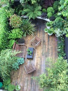 Small Jungle garden: Nicola Stoken Tomkins My garden is, like my house, tiny. Being an inner-city garden it is also overlooked (which ... #smallgardens