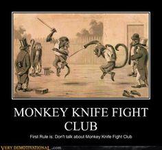 MONKEY KNIFE FIGHT CLUB