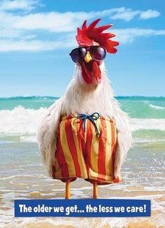 Greeting Card (GBBC2846) Humour Birthday - Chicken - Older We Get