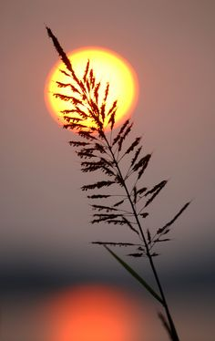 Beautiful Moon over Death Vall Love Moments Beautiful Nature Wallpaper, Beautiful Moon, Beautiful Sunrise, Beautiful Landscapes, Beautiful Scenery, Sunset Photography, Creative Photography, Landscape Photography, Photography Tips