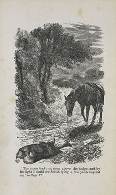 An illustration from the 1877 edition of Anna Sewell's 'Black Beauty'