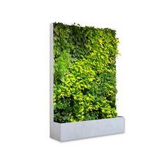 Grüne Wand® Pocket Edition 164